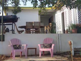 Back2Nature, Barber, Banda Abou, Curacao (VIP) - Christoffel National Park vacation rentals