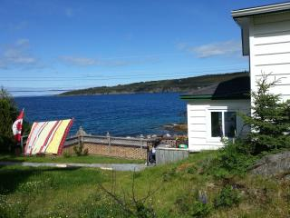 Comfortable House with DVD Player and Fireplace - Harbour Main vacation rentals