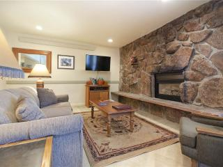 Storm Meadows 300-400 at Christie Base - SM313 - Steamboat Springs vacation rentals