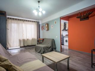 Spacious 1 bdr apartment close to the center - Krasnogvardeysky District vacation rentals