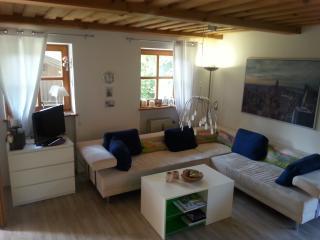 Tolle moderne Wohnung inklusive Pool und Sauna - Hauzenberg vacation rentals