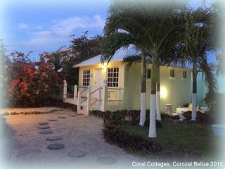 NO CAR NEEDED !! Cottage in Town close to it all ! - Corozal vacation rentals