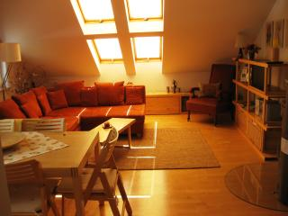 Elegantes Appartement mit Kaminofen - Ilmenau vacation rentals