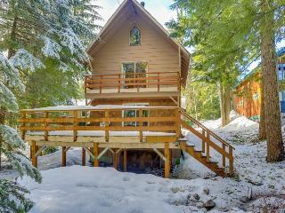 Dog-friendly Mt. Hood chalet w/wood fireplace & deck near Summit Ski Area - Government Camp vacation rentals
