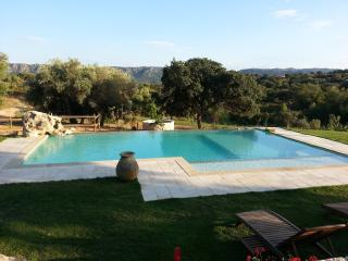 Ancient house with pool, sea and countryside - Olbia vacation rentals