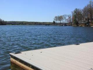 Blue Lake Retreat - Lake House, Quiet Cove - Moneta vacation rentals