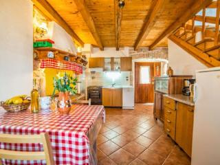Charming Villa with Internet Access and A/C - Nedescina vacation rentals