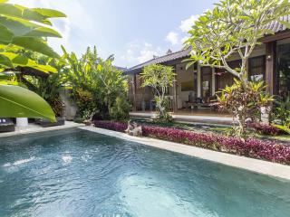 One Bedroom luxury villa with private pool in Ubud - Ubud vacation rentals