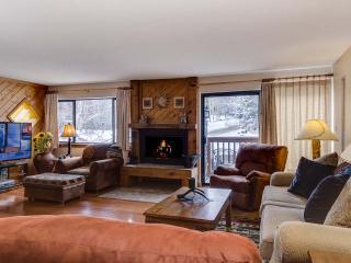1 Bedroom, 2 Bathroom House in Breckenridge  (06B1) - Breckenridge vacation rentals