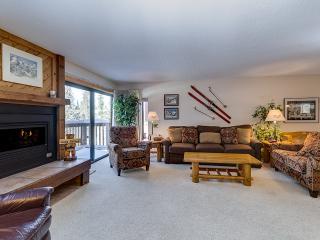2 Bedroom, 2 Bathroom House in Breckenridge  (08B) - Breckenridge vacation rentals