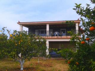 Villa with great view, close to the sea, - Kiparissia vacation rentals