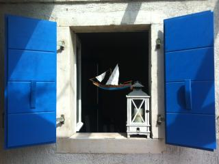 Amasing Istrian home˛&garden - Zambratija vacation rentals