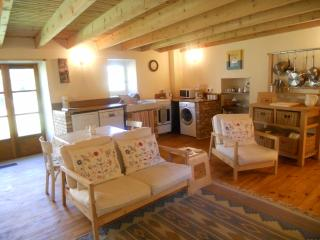 A perfect country holiday retreat Chez Antoinette - Vernet-la-Varenne vacation rentals