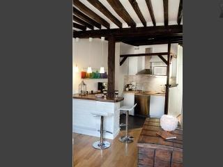 GRACIOUS PENTHOUSE IN LATIN QUARTER - Paris vacation rentals