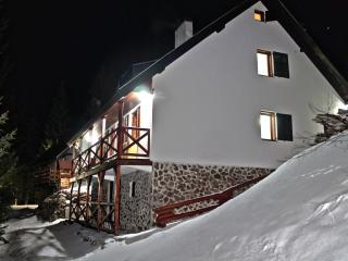 Comfortable Cottage with Internet Access and Television - Kopaonik vacation rentals