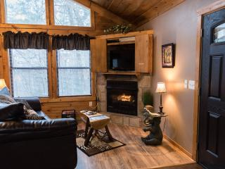 Jungle Safari - Pigeon Forge  Secluded Vacation Rental Cabin - Pigeon Forge vacation rentals