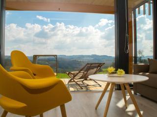 Sunny 1 bedroom La Chapelle-Aubareil Bed and Breakfast with Internet Access - La Chapelle-Aubareil vacation rentals
