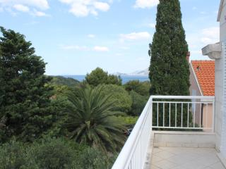 Two-bedroom apartment  with 2 balconies - Cavtat vacation rentals
