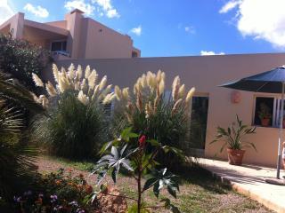 Apartamento gr. con Puesta de Sol en Playa Migjorn - Sant Ferran de ses Roques vacation rentals