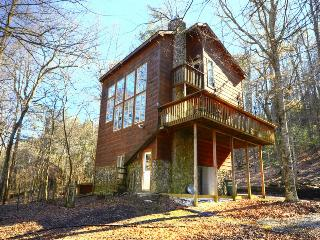 Otter Run, Coosawattee, Riverfront, Fenced Yard - Ellijay vacation rentals