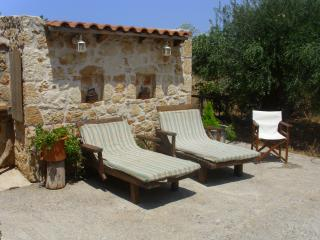 Nice House with Internet Access and A/C - Malia vacation rentals