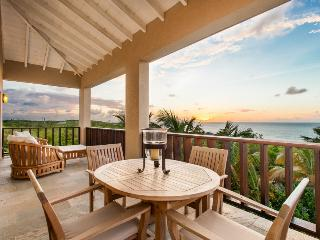 Penthouse Condo with Beautiful Views of Shoal Bay - Shoal Bay Village vacation rentals