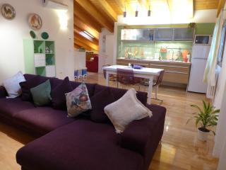 Apartment in Due Carrare, Padova - Due Carrare vacation rentals