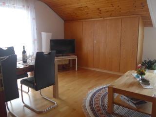 Vacation Apartment in Langenargen - quiet, comfortable, WiFi, Sat TV (# 2319) - Langenargen vacation rentals