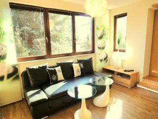 LLAG Luxury Vacation Apartment in Dresden - 5791 sqft, high-quality furnishings (# 4391) - Dresden vacation rentals