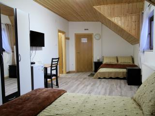 Good Night Room for 3 persons - Plitvice - Vrhovine vacation rentals