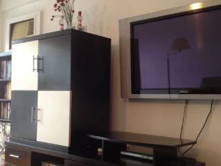 Beautiful 1BR pet friendly flat! 2 balconies, BBQ - Buenos Aires vacation rentals