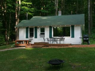Perfect 2 bedroom Cottage in Maple City with Internet Access - Maple City vacation rentals