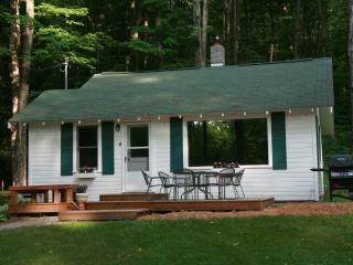 2 bedroom Cottage with Internet Access in Maple City - Maple City vacation rentals