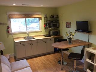 Apple Suite:1 king bdrm ,kitchenette,wifi,bbq,a/c - Penticton vacation rentals