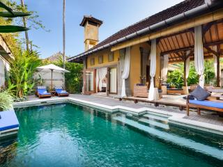 Our Beautiful and Cozy Home in Bali...! - Sanur vacation rentals