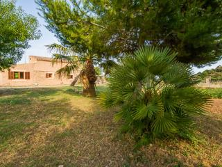 Finca Sa Clota - Arta vacation rentals