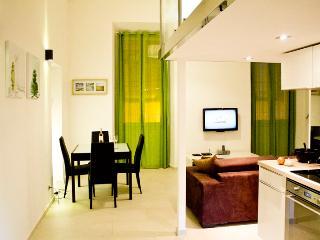 Perfect 1 bedroom Condo in Nice - Nice vacation rentals