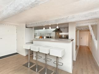 Perfect 1 bedroom Apartment in Nice - Nice vacation rentals