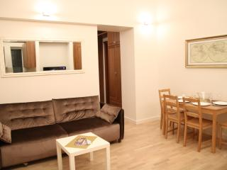 3 room brand new apartment in the center/old town - Vilnius vacation rentals
