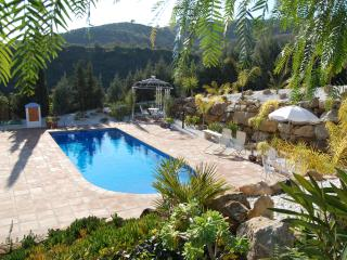Fully air con, Viila with private pool and garden - Alora vacation rentals