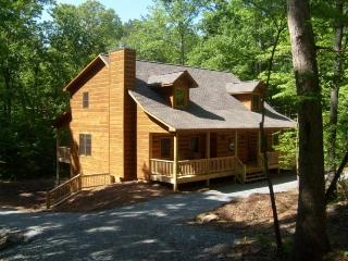 Huge 6 Bed Room Cabin on a Large Lot with Game Room and Fire Pit - Ellijay vacation rentals
