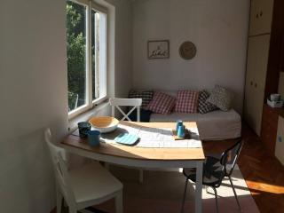 3 bedroom APT on Koločep island Dubrovnik Croatia - Dubrovnik vacation rentals