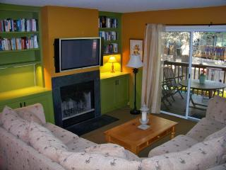 Luxury Eagles Landing Townhouse - Rehoboth Beach vacation rentals