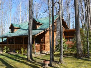 Three Little Birds Cabin - most popular cabin in area & over the top amenities - Cosby vacation rentals