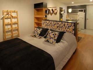 AMAZING STUDIO Palermo SOHO!! - San Carlos de Bariloche vacation rentals