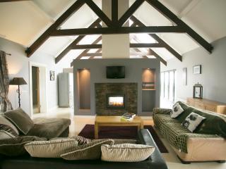 3 bedroom House with Internet Access in Lisdoonvarna - Lisdoonvarna vacation rentals