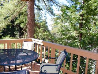 New listing! Lake Arrowhead Haven! - Lake Arrowhead vacation rentals