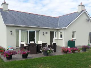 2 bedroom House with Internet Access in Bantry - Bantry vacation rentals