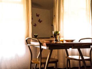 Bellissimo Open Space in pieno centro - Bologna vacation rentals