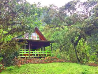 Bright Chalet with Porch and Garden - Mindo vacation rentals